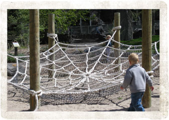 spider web rope toy - Pocatello Zoo